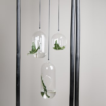 dbkd Hanging Glass Small